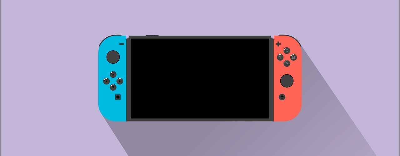 pochettes pour Switch